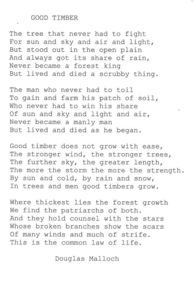 good-timber